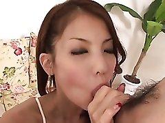 Tiny tits Asian girl sucks him off